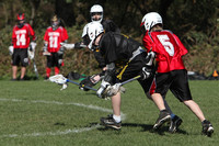 7826 LAX Boys 7-8s v Lake Tapps 030610