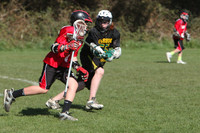 7895 LAX Boys 7-8s v Lake Tapps 030610
