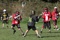 7942 LAX Boys 7-8s v Lake Tapps 030610
