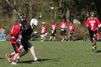 8033 LAX Boys 7-8s v Lake Tapps 030610