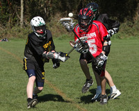 8036 LAX Boys 7-8s v Lake Tapps 030610